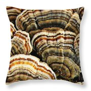 Bracket Fungus 1 Throw Pillow