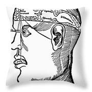 Brain Diagram, 1503 Throw Pillow