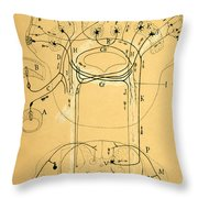 Brain Vestibular Sensor Connections By Cajal 1899 Throw Pillow