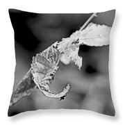 Bramble Leaves - Black And White Throw Pillow