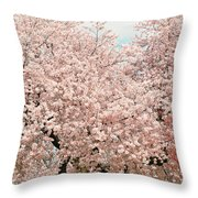 Branch Brook Cherry Blossoms Iv Throw Pillow