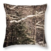Branch In Forest In Winter Throw Pillow