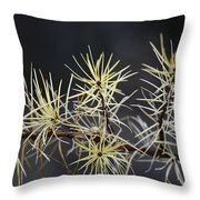 Branch In Winter Throw Pillow