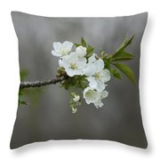 Branch Of Spring Throw Pillow