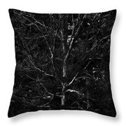 Branch Patterns Throw Pillow