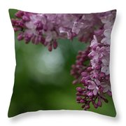 Branch With Spring Lilac Flowers Throw Pillow