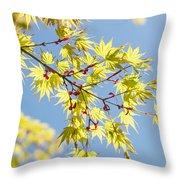 Branche In Springtime Throw Pillow