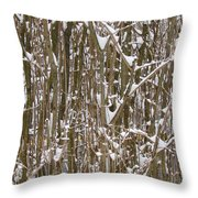 Branches And Twigs Covered In Fresh Snow Throw Pillow