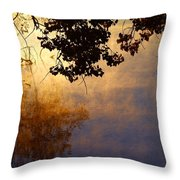 Branches Misty Pond Sunrise Throw Pillow