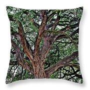 Branches Of Brio Throw Pillow