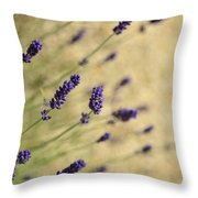 Branches Of Flowering Lavender Throw Pillow