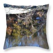 A Wisconsin River Scene Throw Pillow