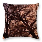 Branching Out At Sunset Throw Pillow