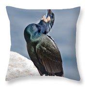 Brandts Cormorant Calling Throw Pillow