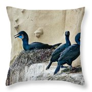 Brandts Cormorant Nesting On Cliff Throw Pillow