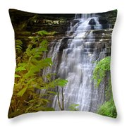 Brandywine Falls Of Cuyahoga Valley National Park Waterfall Water Fall Throw Pillow