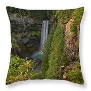 Brandywine Falls Plunge Throw Pillow