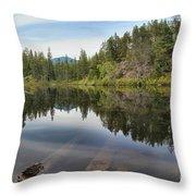 Brandywine Swim Lake Throw Pillow