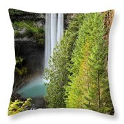 Brandywine Through The Trees Throw Pillow