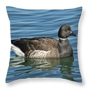 Brant On Calm Water Throw Pillow