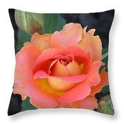 Brass Band Rose Throw Pillow