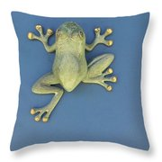 Brass Frog Throw Pillow