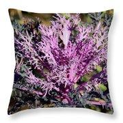 Brassica Throw Pillow