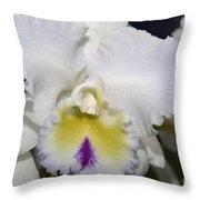 Brassocattleya Orchid 5292 Throw Pillow