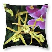 Brassolaelia Yellow Bird And Pink Miltoniopsis  Throw Pillow