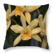 Brassolaeliocattelya Golden Angel 'debbie'  8501 Throw Pillow