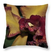 Brassolaeliocattleya Melinda Wheeler Halcyon Throw Pillow