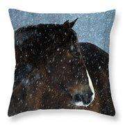 Braving The Blizzard Throw Pillow