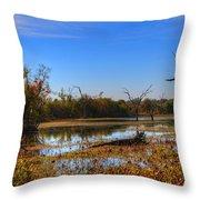 Brazos Bend Swamp Throw Pillow