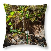 Breadfruit Tree Throw Pillow