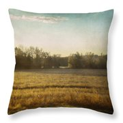 Break In The Trees Throw Pillow
