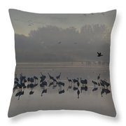 Break Of A New Day Throw Pillow