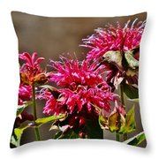 Breakfast At The Bee Balm Throw Pillow