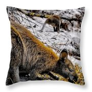 Breakfast Together Throw Pillow