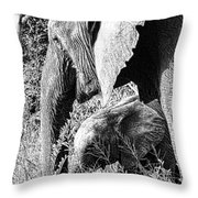 Breakfast With Mother Black And White Throw Pillow