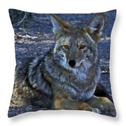 Breaking From The Heat Throw Pillow