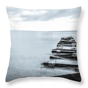 Breakwater Monochrome Throw Pillow