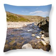 Breamish River Throw Pillow