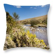 Breamish Valley In Spring Throw Pillow