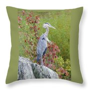 Breast Wind  Throw Pillow