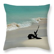 Breathtaking Barbuda Throw Pillow