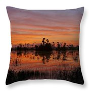 Breathtaking Florida Throw Pillow