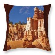 Breathtaking View Throw Pillow