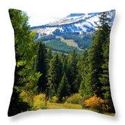 Breckenridge Fall Throw Pillow