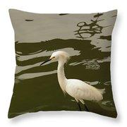 Breeding Egret Throw Pillow