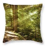 Eternal Woods Throw Pillow